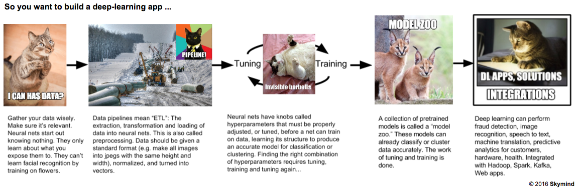 deep learning workflow with cats