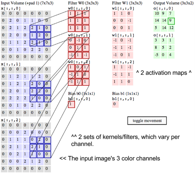 convolutional network labels